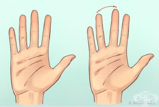 Ръцете на човек разкриват характера му, твърдят учените - изображение