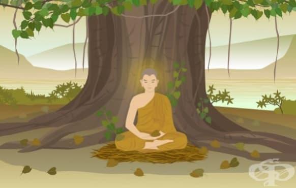 Лек за разбито сърце: Будистките учения за преодоляване на болката - изображение