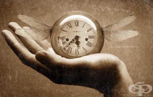 Най-невероятните рекорди на Гинес, които са трудни за надминаване (2 част) - изображение