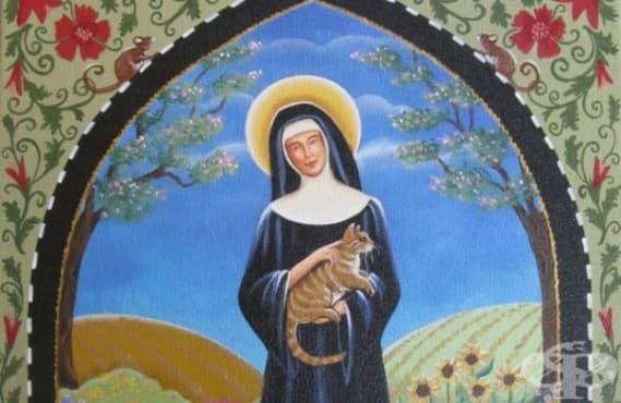 Свети Гертруда от Нивел: покровителката на котките - изображение