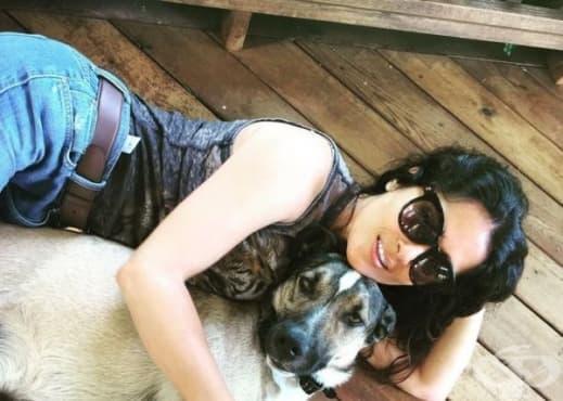 Актрисата Салма Хайек осинови българско бездомно куче - изображение
