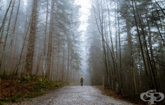 Съвременно понятие ли е самотата - изображение