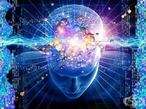 Подгответе мозъка си, защото тези 19 реални факти ще го объркат – част 1 - изображение