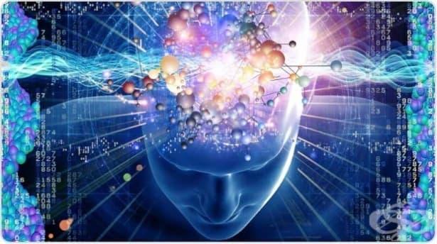 Учените най-накрая откриха гена, отговорен за нашето шесто чувство! - изображение