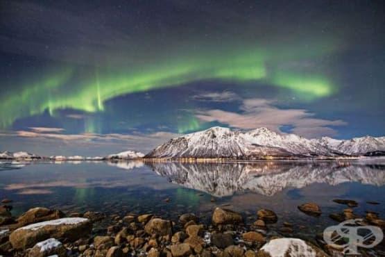 Сортланд - най-китното градче в Норвегия - изображение