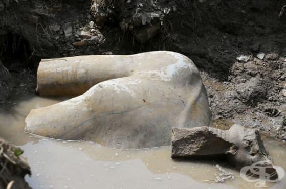 В Кайро бе открита 3 000-годишна статуя на фараона Рамзес II - изображение