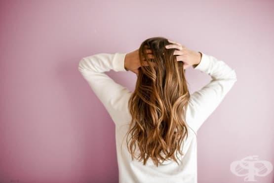 Съвети за здрава и блестяща коса - изображение
