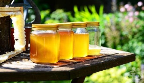 На 10 февруари почитаме паметта на св. Харалампий, покровител на пчеларите - изображение