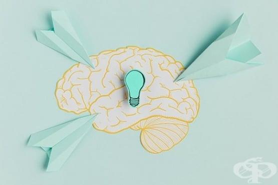 Проверете колко бърз и прецизен е мозъкът ви с Теста на Струп - изображение
