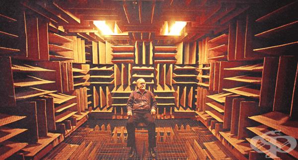 Най-тихото място на Земята ще ви подлуди за 45 минути - изображение