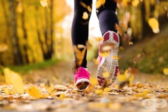 Какво се случва с тялото ви, когато правите физически упражнения 30 минути на ден - изображение