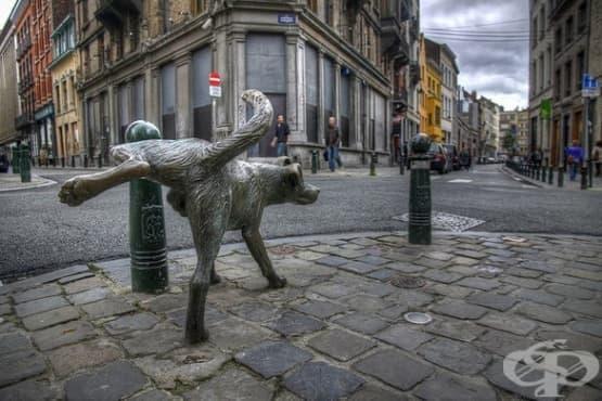 8-те най-велики уриниращи статуи в света - част 1 - изображение