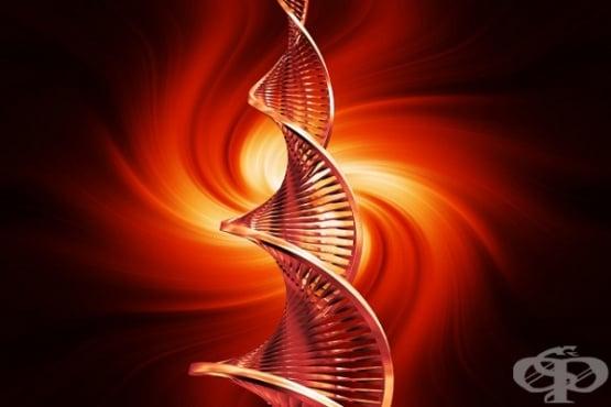 Възможно ли е биологичната еволюция да е започнала още преди появата на самия живот  - изображение