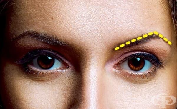 Формата на веждите ви, издава тайни за вашия характер - изображение