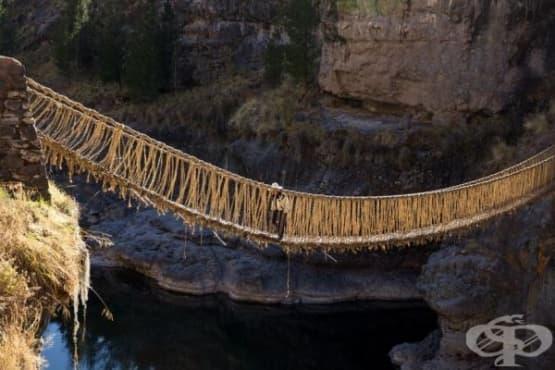 Висящият мост, направен от трева - изображение