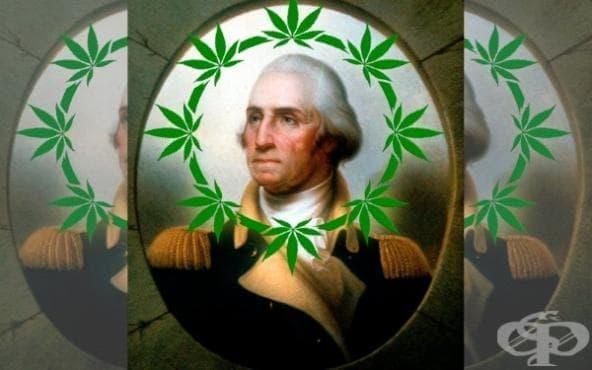 Вижте 11 потенциални любители на марихуана в историята - изображение