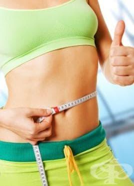 Well Trim IG - грандиозен научен пробив в борбата със затлъстяването и метаболитния синдром - изображение