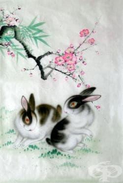 2015 година в китайския зодиак – Годината на Козата. Годишна прогноза за родените под знака на Заек - изображение