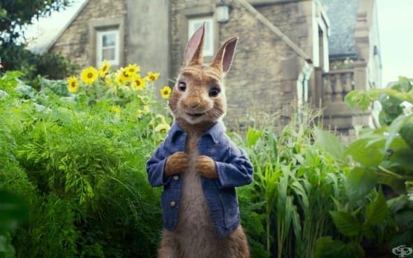 Филмът  за зайчето Питър, остро критикуван от родители на деца с животозастрашаващи алергии - изображение