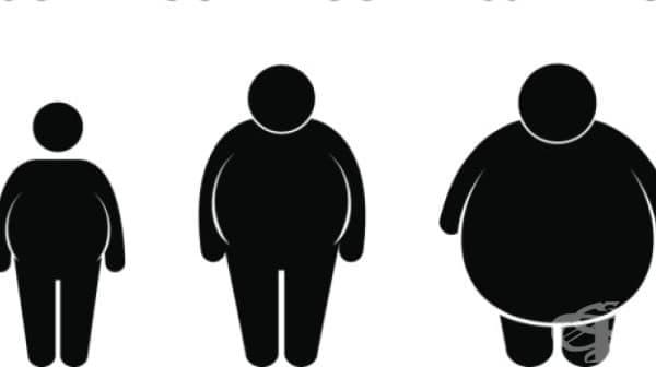 Каква е причината за различните видове наднормено тегло и как да му противодействаме? - изображение