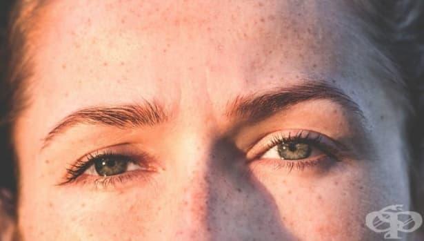 Еволюционното предимство на веждите при хората - изображение