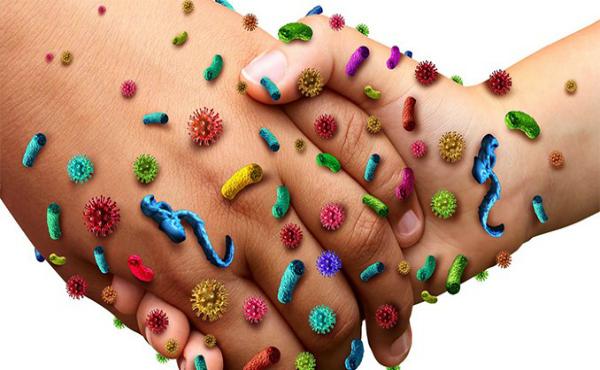 Епидемиология на инфекциозния процес - изображение