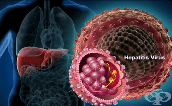 Хепатитни вируси - изображение