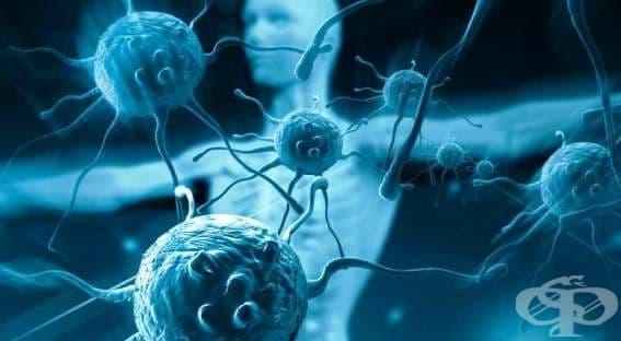Инфекции при пациенти с имунен дефицит - изображение