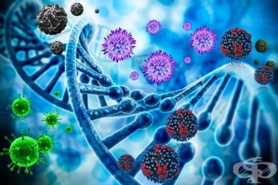 Вирусология - изображение