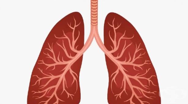 Пневмония без уточнен причинител МКБ J18 - изображение
