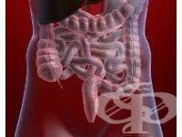 Съдови болести на червата МКБ K55 - изображение
