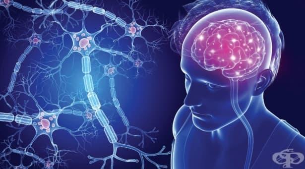 Множествена склероза МКБ G35 - изображение