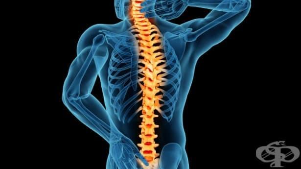 Вродени аномалии на гръбначния стълб и костите на гръдния кош МКБ Q76 - изображение