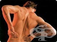 Увреждания на мускулите при болести, класифицирани другаде МКБ M63* - изображение