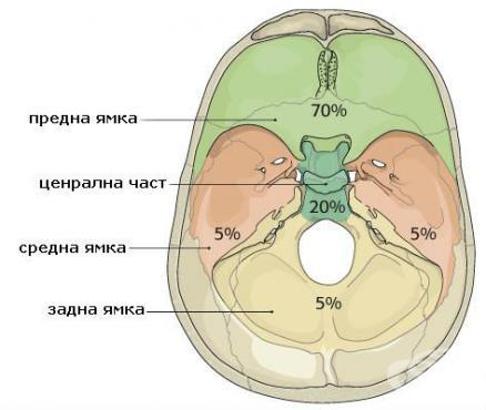 Счупване на основата на черепа МКБ S02.1 - изображение