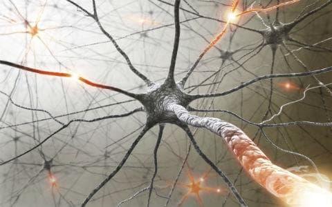 Демиелинизиращи болести на централната нервна система МКБ G35-G37 - изображение
