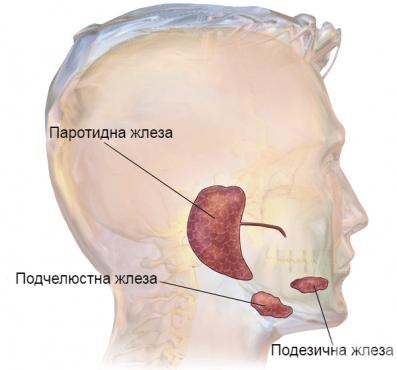 Други болести на слюнчените жлези МКБ K11.8 - изображение