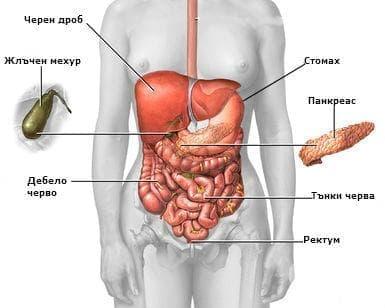 Карцином in situ на други  и неуточнени храносмилателни органи МКБ D01 - изображение