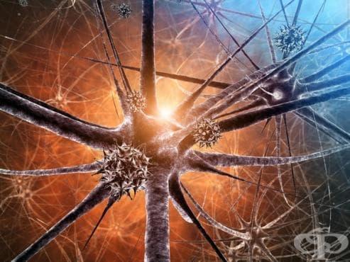 Вирусни инфекции на централната нервна система МКБ A80-A89 - изображение