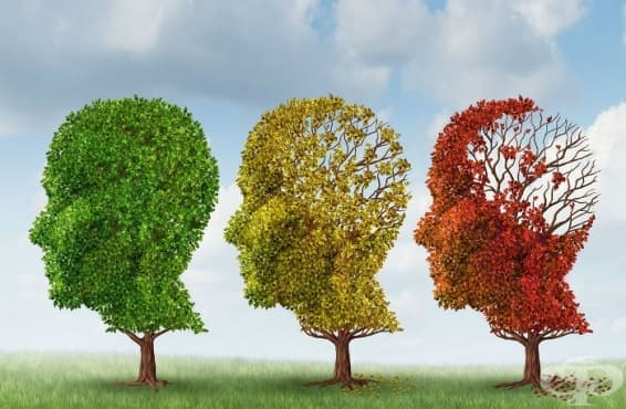 Болест на Алцхаймер МКБ G30 - изображение