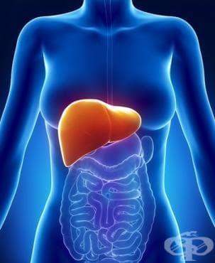 Болест на черния дроб, неуточнена МКБ K76.9 - изображение