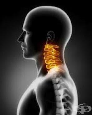 Болест на гръбначния мозък, неуточнена МКБ G95.9 - изображение