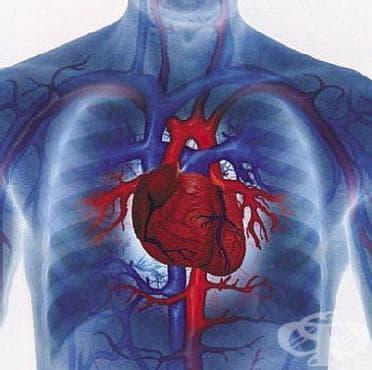 Болест на сърцето, неуточнена МКБ I51.9 - изображение