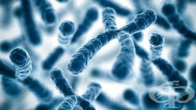 Други пълни и частични тризомии на  автозоми, некласифицирани другаде МКБ Q92 - изображение