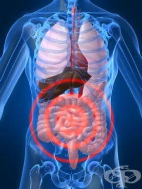 Други бактериални, чревни инфекции МКБ A04 - изображение
