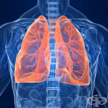 Други бактериални пневмонии МКБ J15.8 - изображение