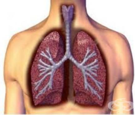Други остри респираторни инфекции на долните дихателни пътища МКБ J20-J22 - изображение