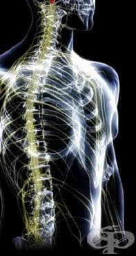 Други усложнения, причинени от спинална или епидурална анестезия в послеродовия период МКБ O89.5 - изображение