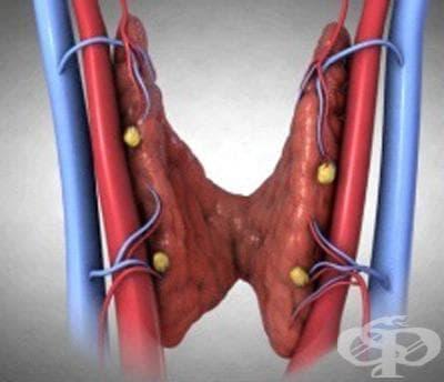 Други уточнени разстройства на паращитовидните жлези МКБ E21.4 - изображение