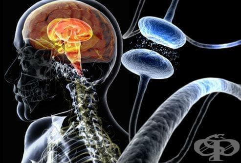 Други увреждания на централната нервна система МКБ G96 - изображение